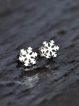 Brincos Neve